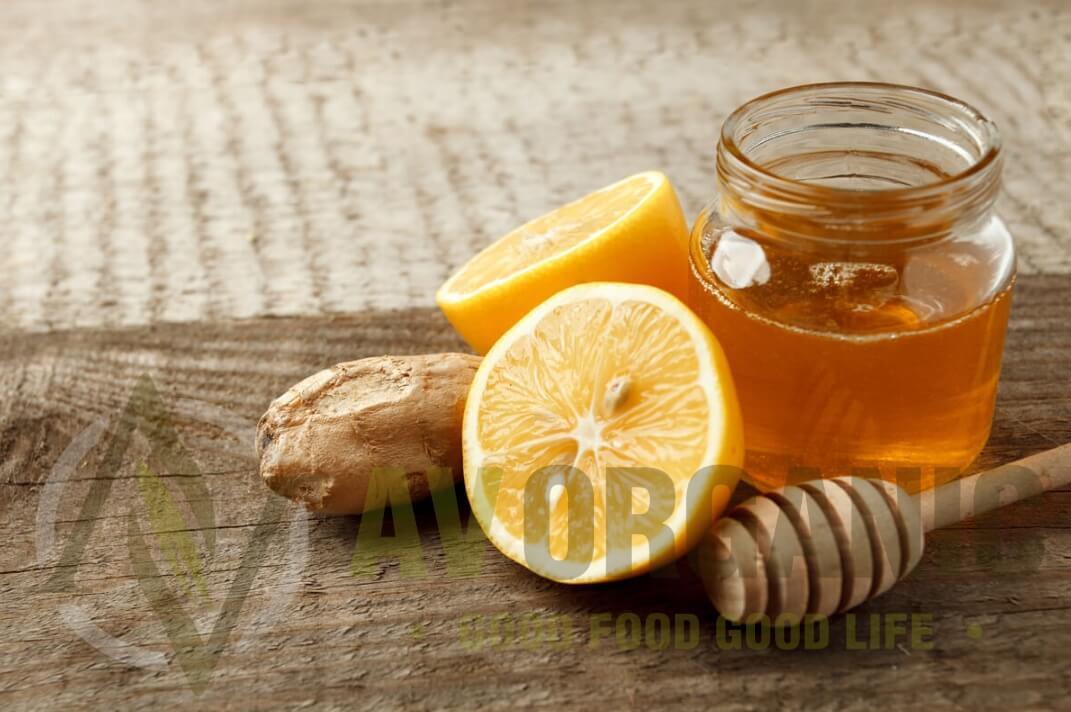 Fermentasi Madu Lemon