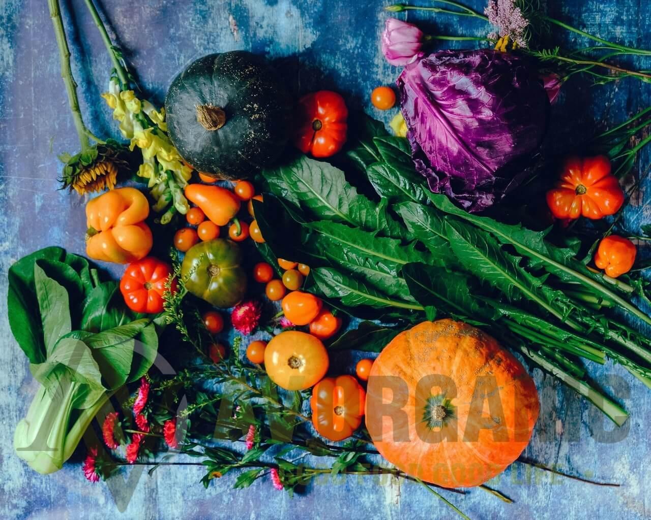Toko Organik Sehat Alami