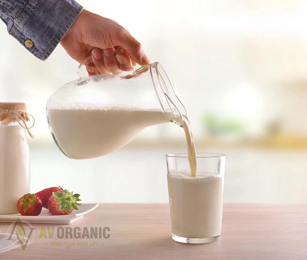 Cara Konsumsi Susu Kambing Segar